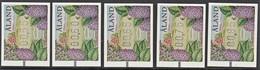 ALAND 2006  ATM LABEL FRAME SET  UNIFICATO N..... MNH - Aland