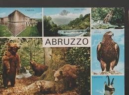 ABRUZZO, VEDUTE DIVERSE-VIAGGIATA--.1974-FG-MT3377 - Italy