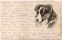Chien - BIllustration    -   (118780) - Dogs