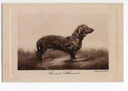 ANIMAUX - CHIEN * DOG * BASSET ALLEMAND * TECKEL * Série 6055-7 - Dogs