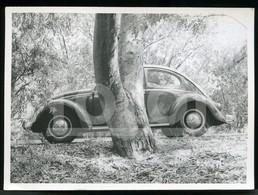 60s  ORIGINAL AMATEUR PHOTO FOTO VOITURE VW VOLKSWAGEN BEETLE COCCINELLE CAR PORTUGAL BT73 - Coches