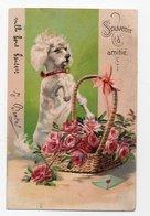 ANIMAUX - CHIEN * DOG * Dressé Sur Ses Pattes * CANICHE * PANIER * FLEURS * SOUVENIR AMITIE * ENVELOPPE * Série 5575 - Dogs