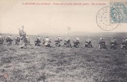 St-Anthème Pay-de-Dôme Plateau De La Fayolle Tirs De Combat - Manoeuvres