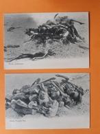 2 CPA - Hindu Funeral Pile - Hindu Cremation - Inde