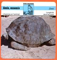 Fiche Zoos Longévité Dans Les Zoos Illustration Tortue Géante Etude Zoologique Amis Ennemis L'homme Et L'animal - Animales