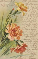 AK Nelken - Künstlerkarte - Wenden 1909   (48885) - Fleurs