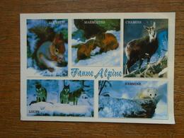 "Faune Alpine , Multi-animaux """" Timbre Roulette """" - Dieren"