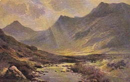 AK Landschaft Im Gebirge - Ca. 1910  (48889) - Illustrators & Photographers