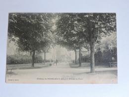 RICHELIEU - Château De Richelieu - Entrée Du Parc Ref A0050 - France