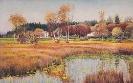 AK Dorflandschaft Mit See - Ca. 1910 (48901) - Illustrators & Photographers