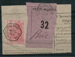FEF-194  LIEGE PALAIS  Op Fragment Met LIEGE PALAIS   Naar BREE - Railway