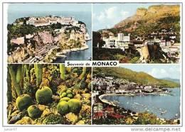 Monaco, Multivue - Monaco