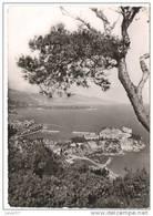 Monaco, Vue Générale - Monaco