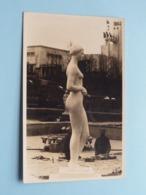 EXPOSITION > Anno 1935 > Carte Photo > Figure Pour La Roseraie ( Platre ) ART / KUNST ( Zie/voir Photo ) ! - Fotografie