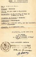 A   1946 Fiche De Renseignements Concernant Une Personne Juive Arrétée Par Les Allemands Et Déportée - 2. Weltkrieg 1939-1945