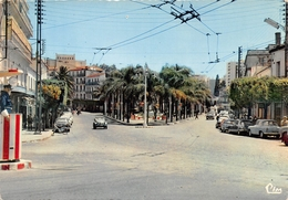 ALGERIE - ALGER - Place Du 1er Novembre - (CPSM Grand Format) - Algeri