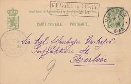 CARTE LUXEMBOURG. VIANDEN 30 1 04. ENTIER 5c POUR BERLIN - Luxembourg