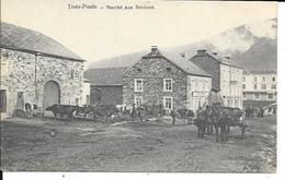 Trois-Ponts - Marché Aux Bestiaux - Attelage - Bétails - Circulé: 1907 - 2 Scans - Trois-Ponts