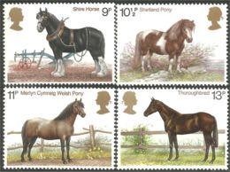 422 G-B 1978 Chevaux Horses Thoroughbred Pur-sang Shetland Pony Poney MNH ** Neuf SC (GB-839b) - Horses