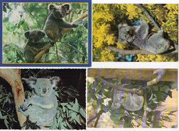 KOALA - 4 CP - Australie  ...   ..   (118823) - Animaux & Faune