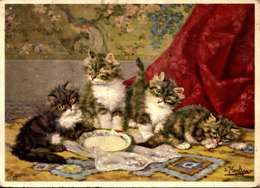 ILLUSTRATEUR DESSIN CHAT CHATS ** ARTIST SIGNED DRAWN CARD CAT CATS ** D MERLIN /LOT  4032 - Chats