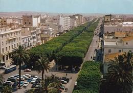 Tunisie, Tunis, Avenue Habib Bourguiba - Tunisia
