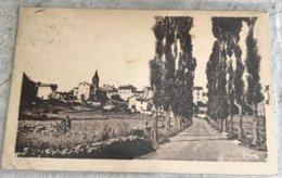43  Loudes 1949 Panorama Route De Borne - Loudes