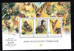 Nederland 2020, Persoonlijke Zegels: 25 Jaar Rien Poortvliet, Haas, Eend, Ree, Vos, Vogel, Hare, Duck, Roe, Fox, Bird, - Neufs