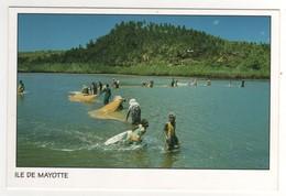 Pêche Au Djarifa , Baie De Chicori , Carte , Postcard  Neuve - Mayotte