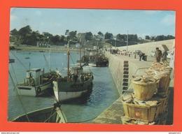 PL/14 BINIC LE DEBARQUEMENT DES COQUILLES SAINT JACQUES  // écrite 1971 Timbre Poste - Binic
