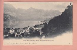 OUDE POSTKAART - ZWITSERLAND - SCHWEIZ - MURG - WALENSEE  - 1900'S - SG St. Gallen