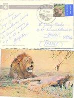 ZIMBAWE  - CP  KARIBA 29.1.1981 / 2 - Zimbabwe (1980-...)