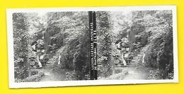 Vues Stéréos LUCHON Cascade Inférieure De Montaubon - Stereoscopic