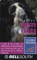Ecuador, EC-BSP-103A, Oso De Anteojos, On Back: Caduca Noviembre 2000, 2 Scans. - Ecuador