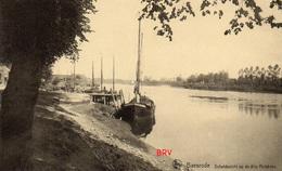 Photo, Baesrode, Baasrode, Scheldezicht Op De Drie Huiskens, Foto Van Oude Postkaart, 2 Scans - Lieux