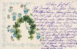 AK Blumen - Klee Vergissmeinnicht - Reliefdruck - Künstlerkarte - Weissenbach Triesting 1905  (48910) - Blumen