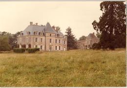 85 - MONSIREIGNE - CHÂTEAU DU BOIS-TIFFRAY - France