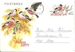 Norway 1977 Post Letter Imprinted Stamp For Christmas 1977, Bird, Eurasian Bullfinch, Pyrrhula Pyrrhula, Cancelled - Lettres & Documents