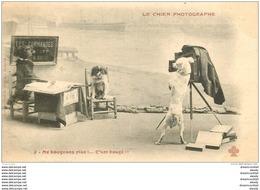 ANIMAUX. Le Chien Photographe Vers 1900 Série N° 2 - Dogs