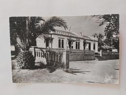 Francis-Garnier ( Place De La Mairie Les Écoles Et La Poste) Algérie - Algeria