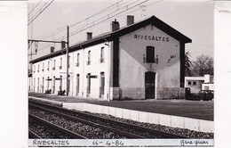 66 / RIVESALTES / 2 PHOTO VERITABLE  GARE 1984 M/ CITROEN 2 CV - Rivesaltes