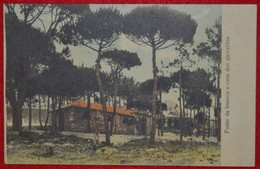 Postcard Of The  Cintra /  Fonte Da Boneca E Casa Dos Garrafoes ( Lote Nº 673 ) - Lisboa