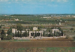(B377) - ALESSANO (Lecce) - Panorama, Il Cimitero - Lecce
