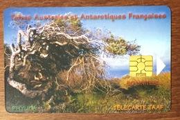 TAAF LE PHYLICIA TÉLÉCARTE 50 UNITÉS RÉFÉRENCE PHONECOTE TAAF29 TIRAGE GLOBAL 1500 EX PHONECARD - TAAF - Terres Australes Antarctiques Françaises