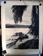 Congo Belge Poster Bac Reliant Le Port De Matadi à La Rive Opposée Du Fleuve Congo - Collections