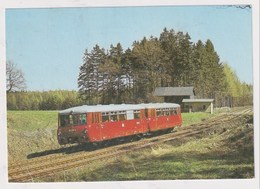 TRAIN  - AK 377855 Leichttriebwagen 172 745 Als P 8668 Bei Schönberg (Vogtl.) - Trains