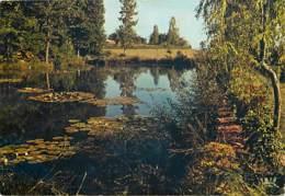19 - Corrèze - Le Limousin - Un étang - Flamme Postale De Bugeat - Voir Scans Recto-Verso - France