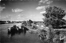 PHL Photo Cpsm 91 DRAVEIL. Péniches Sur La Seine Et Camping - Draveil