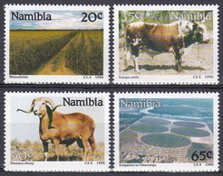 Namibia Südwestafrika SWA 1990 Landwirtschaft Agriculture Tiere Animals Rinder Cattles Schafe Sheeps Mais, Mi. 679-2 ** - Namibia (1990- ...)