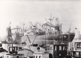 1955169Rotterdam, Havengezicht. (FOTO KAART)14,5 X 10,5. (minuscule Vouwen In Rechter Boven En Onder Hoek) - Rotterdam